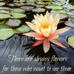 Feel Good Friday: Will You Choose to See the Flowers?