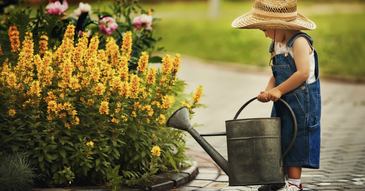 The gardening metaphor that will make you a less anxious parent fb